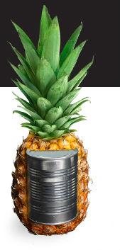 Hawaiian-Pineapple-History
