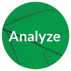 Analyze_Brand_Timeline_Icon.png