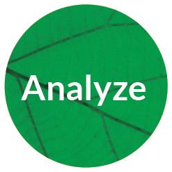 Creative Company branding process - analyze