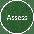 Creative Company branding process - assess