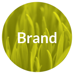Brand_Brand_Timeline_Icon.png