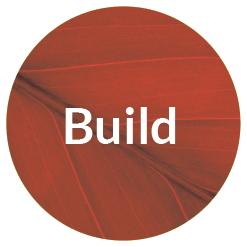 Build_Brand_Timeline_Icon.png