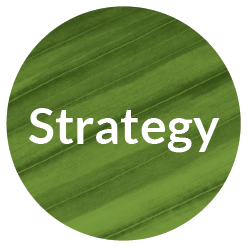 Strategy_Brand_Timeline_Icon.png