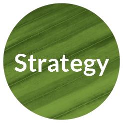 Creative Company branding process - strategy