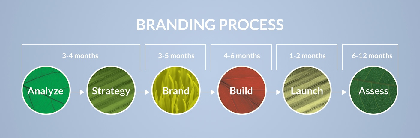 Creative Company branding process timeline