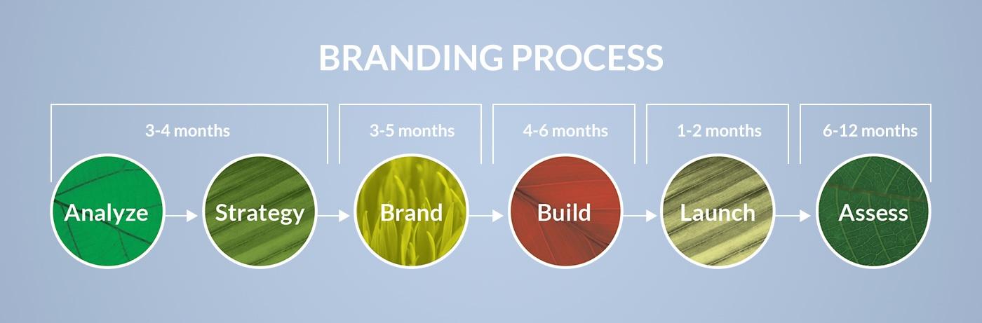 branding_process_creativeco.jpg