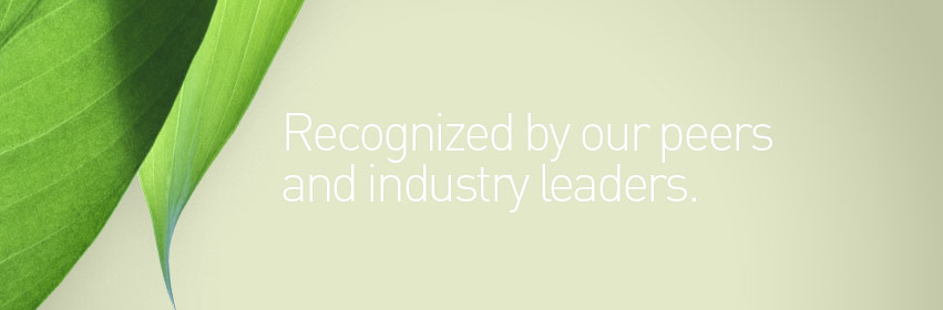 Marketing awards for design, copywriting and brand programs.